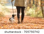 Woman Goes With A Dog Walking...