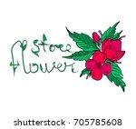 flowers vector illustration.... | Shutterstock .eps vector #705785608