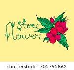flowers vector illustration.... | Shutterstock .eps vector #705795862