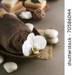 spa | Shutterstock . vector #70586044