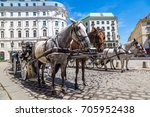 Horse Carriage In Vienna ...