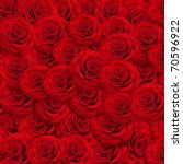 Fresh Red Roses Backgroud With...