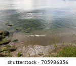 mossy sea | Shutterstock . vector #705986356