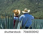 contemplating the field of... | Shutterstock . vector #706003042