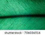 banana leaf. banana leaves have ... | Shutterstock . vector #706036516