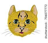vector illustration of little... | Shutterstock .eps vector #706077772