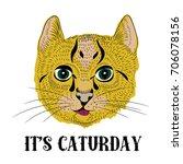 little cute cat with long... | Shutterstock .eps vector #706078156