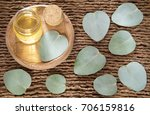eucalyptus leaves and oil ... | Shutterstock . vector #706159816