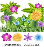 colorful flowers in tropical... | Shutterstock .eps vector #706188166