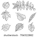 illustration on white... | Shutterstock .eps vector #706522882