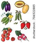 illustration on white... | Shutterstock .eps vector #706522885