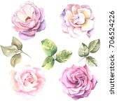 set of watercolor roses | Shutterstock . vector #706524226