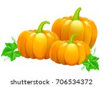 three beautiful ripe orange... | Shutterstock .eps vector #706534372