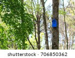 colorful houses for birds on... | Shutterstock . vector #706850362