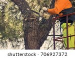 man cutting a tree in the city  ... | Shutterstock . vector #706927372