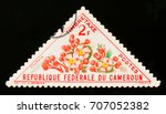 Small photo of MOSCOW, RUSSIA - AUGUST 29, 2017: A stamp printed in Cameroon shows Ochna flower, circa 1963
