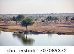 the usual nature of rajasthan.... | Shutterstock . vector #707089372