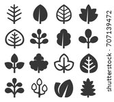 leaf icons set on white... | Shutterstock .eps vector #707139472
