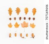 autumn composition. autumn... | Shutterstock . vector #707169646