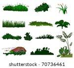 set of different types of grass ...   Shutterstock . vector #70736461