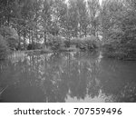 tree lined lake   black and... | Shutterstock . vector #707559496