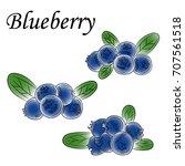 painted blueberry. vector... | Shutterstock .eps vector #707561518