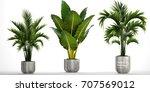 3d digital render of plant... | Shutterstock . vector #707569012