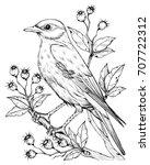 Linear Bird And Flower  Berrie...