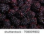 blackberries | Shutterstock . vector #708009802