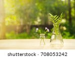 science flask with flower and... | Shutterstock . vector #708053242