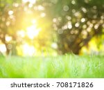 abstract nature background | Shutterstock . vector #708171826