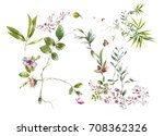 watercolor painting of leaves... | Shutterstock . vector #708362326