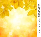 autumn leaves on the sun and... | Shutterstock . vector #708456298