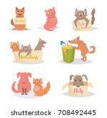 stray cats and dogs. homeless.... | Shutterstock .eps vector #708492445