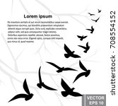 a flock of birds. silhouette.... | Shutterstock .eps vector #708554152