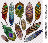 embroidery feathers of tropical ... | Shutterstock .eps vector #708557065