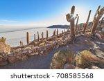 isla incahuasi  salar de uyuni  ...   Shutterstock . vector #708585568