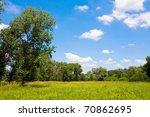 nice summer scene in steppe | Shutterstock . vector #70862695