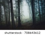forest path in fog  mysterious...   Shutterstock . vector #708643612