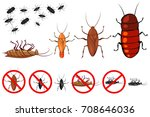 cockroach species vector icons... | Shutterstock .eps vector #708646036