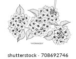 hand drawn and sketch hydrangea ... | Shutterstock .eps vector #708692746
