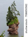 Small photo of Fundy Trail Parkway Flower Pot