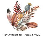 set feathers  seeds poppy ... | Shutterstock . vector #708857422
