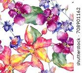 wildflower orchid flower... | Shutterstock . vector #708901162