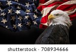 north american bald eagle with... | Shutterstock . vector #708934666