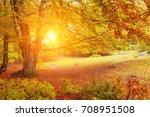 landscape nice fantasy forest... | Shutterstock . vector #708951508