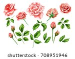 flowers. vector realistic hand...
