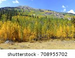fall foliage with aspen trees... | Shutterstock . vector #708955702