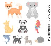 animals set icons in cartoon... | Shutterstock .eps vector #709019896