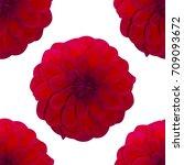 Dahlia Red Pattern Seamless....